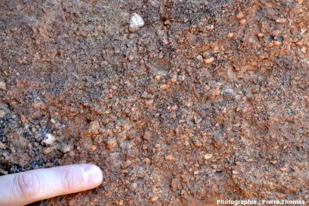 Gros plan sur le grès arkosique constituant Uluru