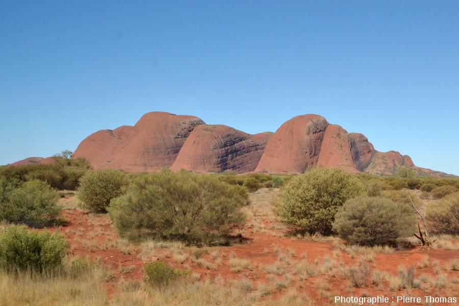 Les Kata Tjuta vus du sol depuis le Sud-Ouest