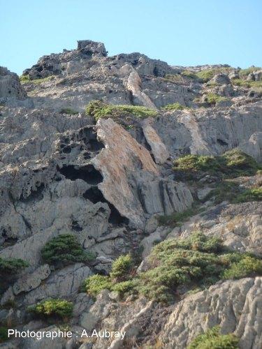 Taffonis de taille métrique dans des micaschistes, Cap de Creus (Espagne)