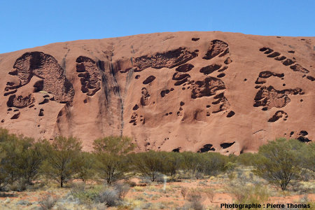 "Taffonis ""perforant"" la zone centrale de la face Nord-Est d'Uluru, Australie"