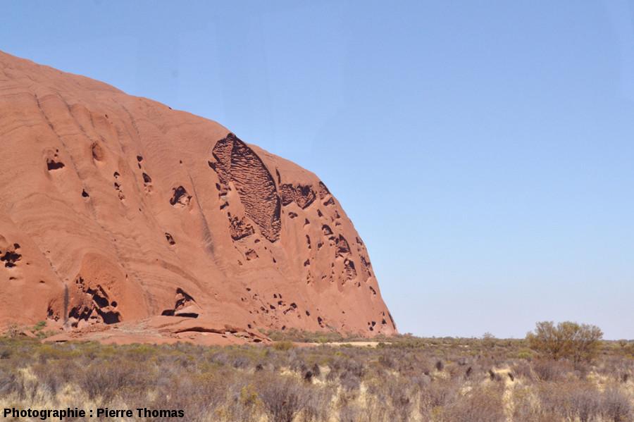Vue, plus éloignée et oblique, des taffonis de la face NE d'Uluru, Australie