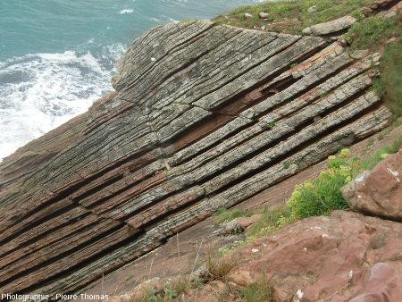 Failles inverses affectant une série marno –calcaire du Danien (premier étage du Paléocène), Zumaia, Pays Basque, Espagne