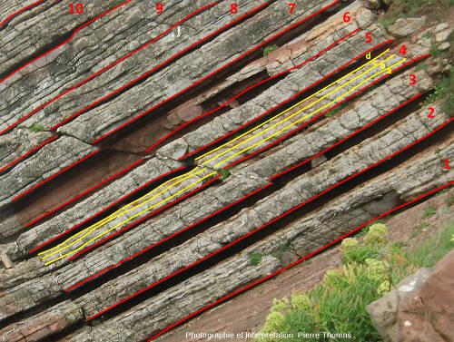 Zoom interprété sur la partie inférieure de l'affleurement marno-calcaire de Zumaia (Espagne)