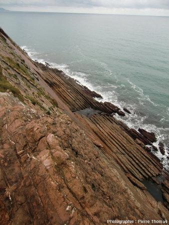 Vue d'ensemble d'un autre secteur de la côte de Zumaia, montrant le même type de double rythmicité