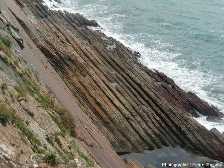 Vue d'un autre secteur de la côte de Zumaia, montrant le même type de double rythmicité
