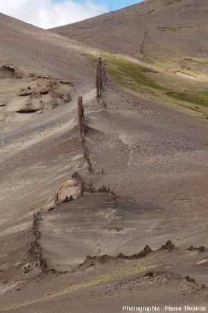 Vue d'une partie du dyke n°3, Patagonie argentine