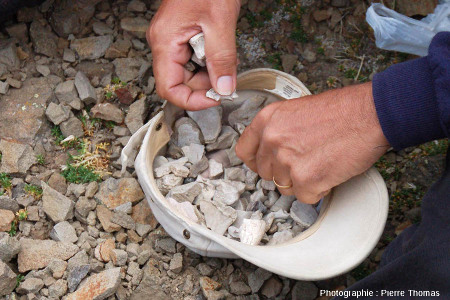 Géologue triant des morceaux de sédiments pour en extraire des fragments d'écailles et d'os de glyptodontidés