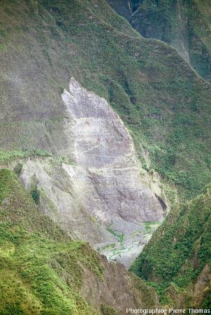 Zoom sur un arrachement dans la vallée du Bras des Roches Noires, vu depuis le belvédère de Bois Court