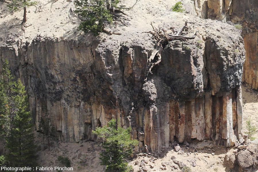Zoom sur la coulée présentant la structure caractéristique des coulée de lave avec, de bas en haut colonnade, entablement (plus ou moins visible) et fausse colonnade