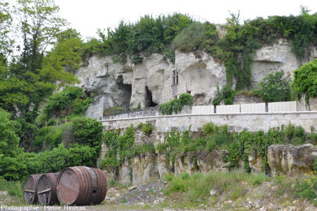Cavités troglodytiques dans divers états de conservation sur la rive gauche de la Loire entre Montsoreau et Saumur (Maine et Loire)