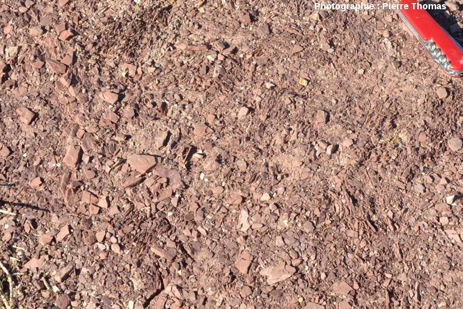 Vue très rapprochée du bord du cratère principal, éjectas constitués de roches intensément fracturées mais non consolidées
