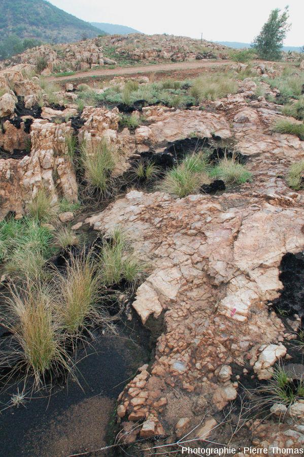 Brèche monogénique autochtone au fond du cratère de Vredefort, Bobbejaanrant, Afrique du Sud