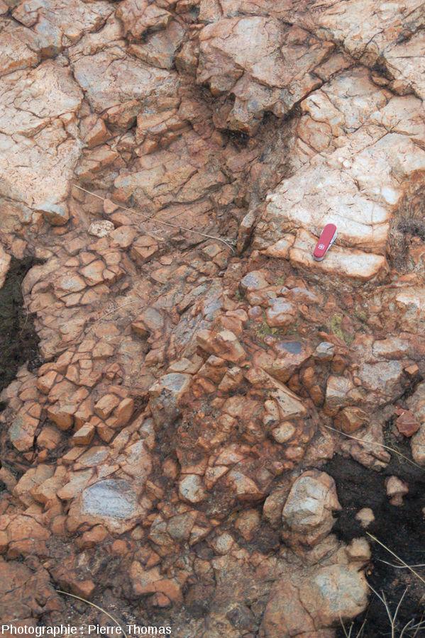 Gros plan sur un affleurement de brèche monogénique autochtone, site de Bobbejaanrant, Afrique du Sud