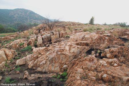 Exemple de transition entre, à gauche, les quarzites verticales, substratum redressé mais non éjecté, et, à droite, les brèches - site de Bobbejaanrant, Afrique du Sud