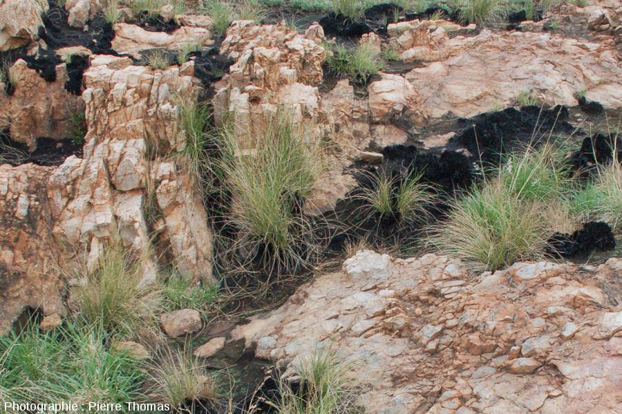 Autre secteur où l'on voit les brèches (en bas à droite) et les couches verticales de quartzite encore identifiables mais très fracturées (en haut à gauche) - site de Bobbejaanrant, Afrique du Sud