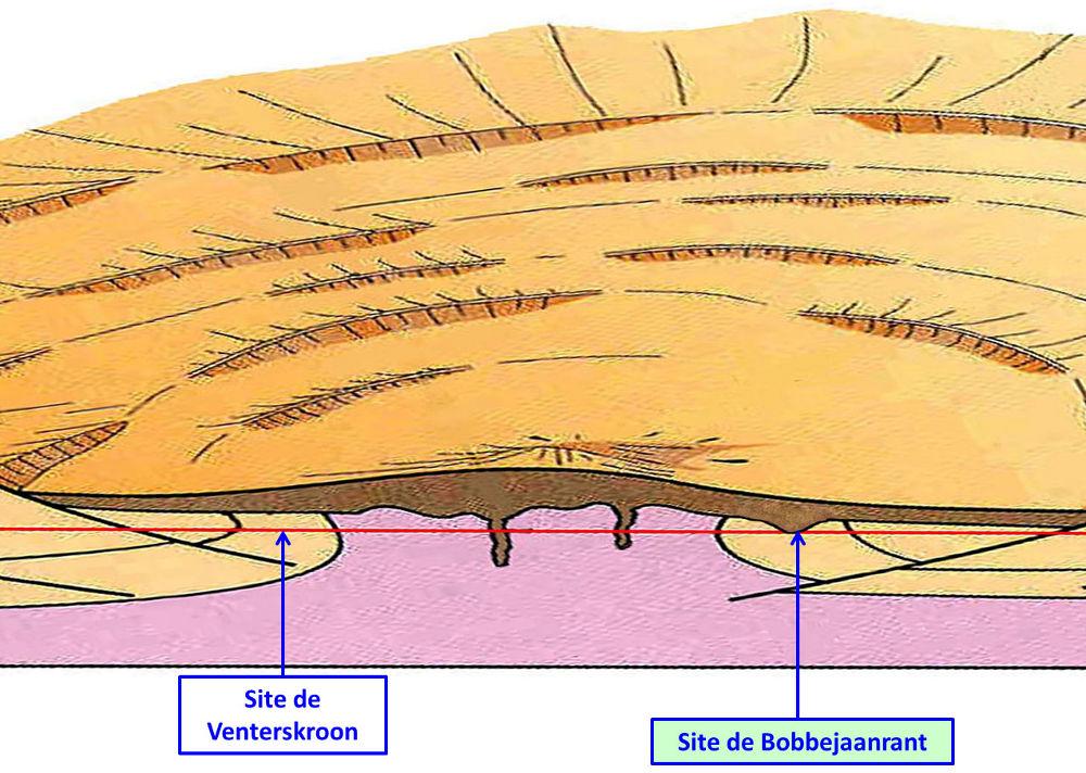 Position théorique du site de Bobbejaanrant (dans la couronne périphérique du dôme de socle métamorphique) sur le bloc diagramme par Mc Carthy et Rubidge