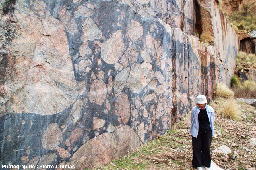 Brèches d'impact pseudotachylitiques (impact melt rocks) de l'astroblème de Vredefort, carrière de Leeukop, secteur de Parys, Afrique du Sud