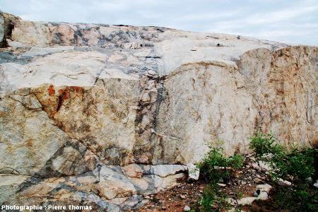 """Parois verticales dans la carrière de Salvamento (région de Parys, Afrique du Sud) recoupant des """"veines"""" sub-sverticales remplies de brèches pseudotachylitiques"""
