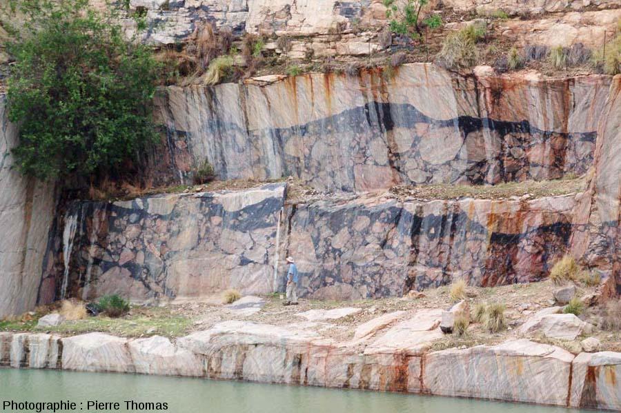 Front de taiile avec deux parois verticales recoupant deux veines de pseudotachylite parallèlement à leur direction, carrière de Leeukop, région de Parys, Afrique du Sud