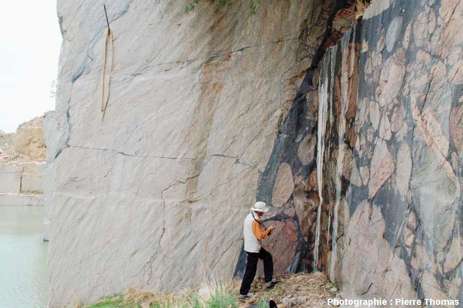 Vue sur une paroi verticale recoupant perpendiculairement la bordure d'une veine pseudotachylitique, carrière de Leeukop, Afrique du Sud