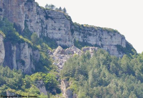 Amoncellement d'éboulis récent (moins colonisé par la végétation que le reste du secteur) situé près du sommet du plateau