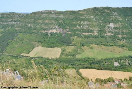 Vue d'ensemble sur le versant rive droite du Soulzon face à Roquefort, Aveyron