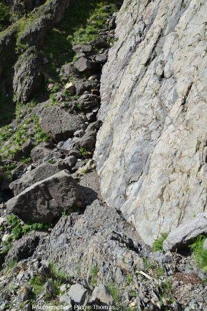Contact socle / marno-calcaires sur le miroir de la faille du col d'Ornon