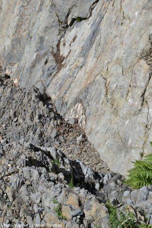 Contact par faille entre les marnes schistosées du Lias supérieur (à l'avant) et les gneiss hercyniens (à l'arrière)