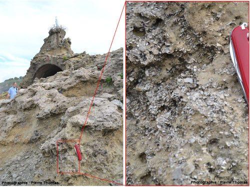 Vue d'ensemble et de détail sur le Rocher de la Vierge (Biarritz, Pyrénées Atlantiques)