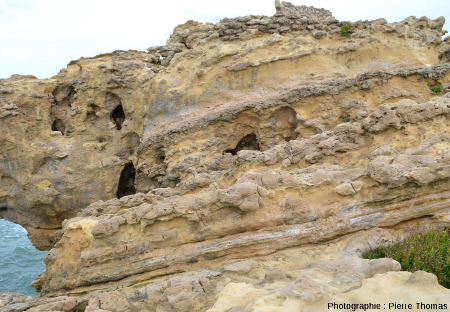 Vue d'ensemble des alternances de sables et grès calcaires situé avant le départ de la passerelle menant au Rocher de la Vierge, Biarritz