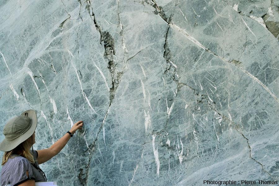 Détail sur le réseau de fentes ouvertes remplies de quartz et/ou de calcite de la figure précédente