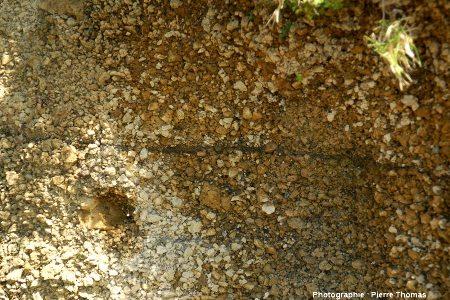 Zoom dans la nappe d'ignimbrites (non soudées) supérieure qui recouvre les flancs Ouest et Nord du volcan de l'île de Faial