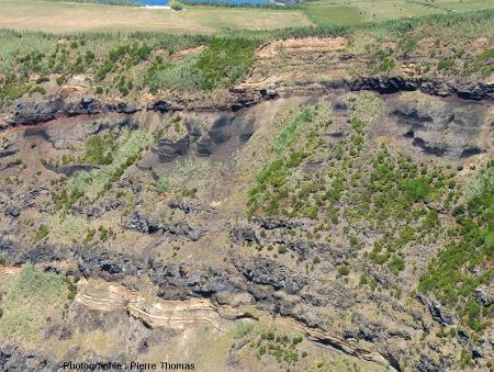 Détail de la partie sommitale de la falaise ONO de l'île de Sao Miguel (Açores)