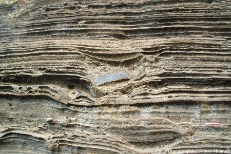 Figures d'impact dans les dépôts surtseyens et/ou phréato-magmatiques le long de la petite route descendant au port de Capelas, île de Sao Miguel, Açores