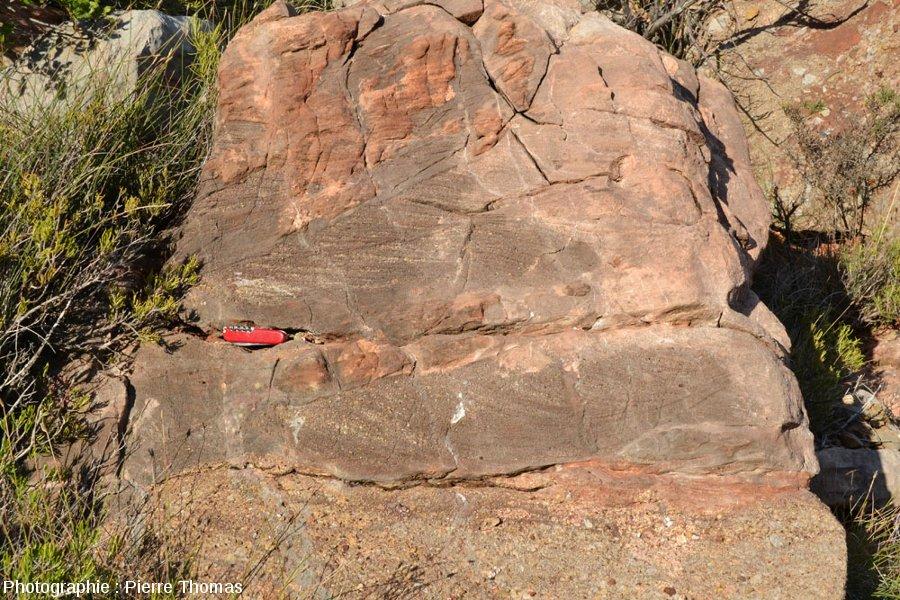 Stratifications obliques dans des alternances de grès fins et grossiers (anciens sables et graviers), Crétacé terminal du Sud de la France (faciès dit Rognacien)