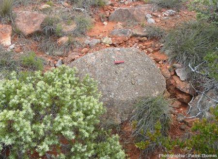 Bloc rocheux (bloc A) contenant l'œuf de dinosaure des figures précédentes
