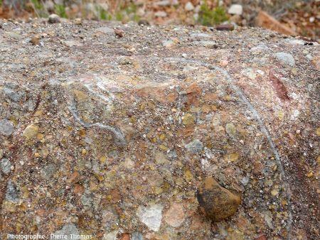 Œuf de dinosaure, en haut du bloc D
