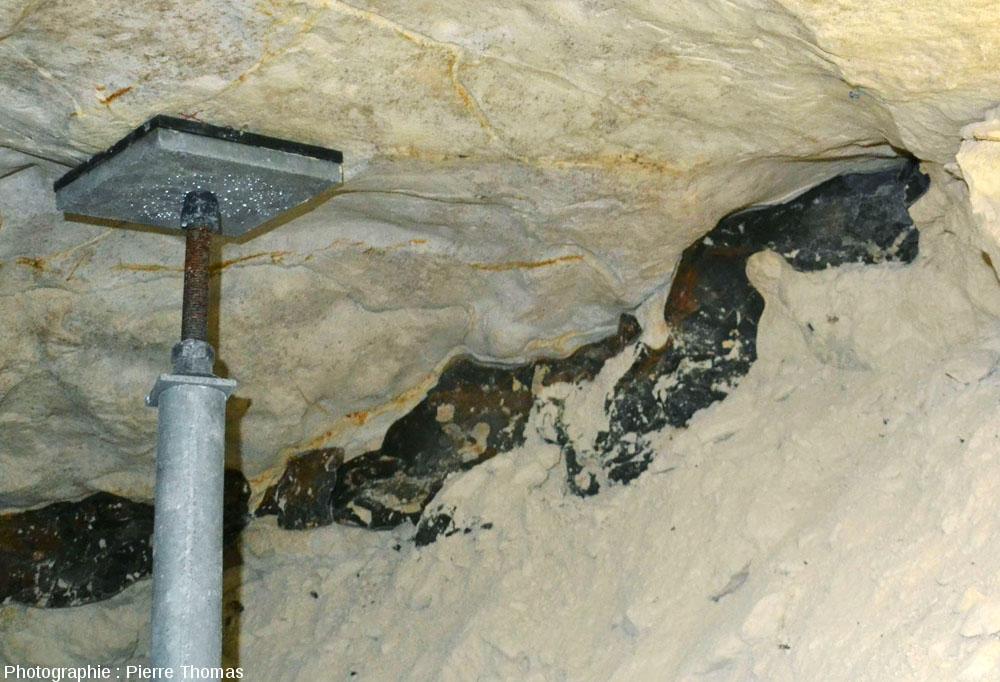 Gros plan sur un rognon de silex in situ dans la craie campanienne d'une minière de silex de Spiennes (Belgique)