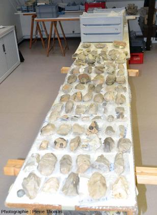Dans le Centre de Recherche Archéologique du Camp à Cayaux (Spiennes, Belgique)