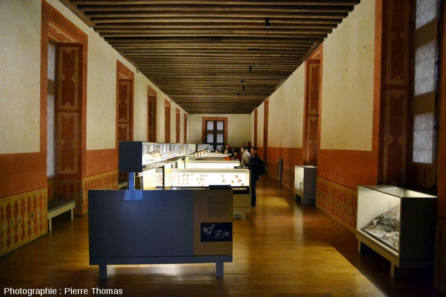 L'une des pièces de la partie du château datant du XVIème siècle et abritant les collections d'objets préhistoriques du Grand Pressigny