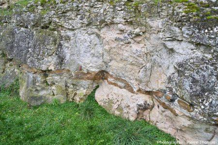 Calcaire turonien (craie tuffeau) avec un très beau lit de silex à la base de la paroi des anciennes douves du château du Grand Pressigny