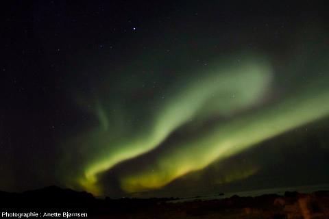 Aurore boréale prise en février 2013 aux îles Lofoten (Norvège)