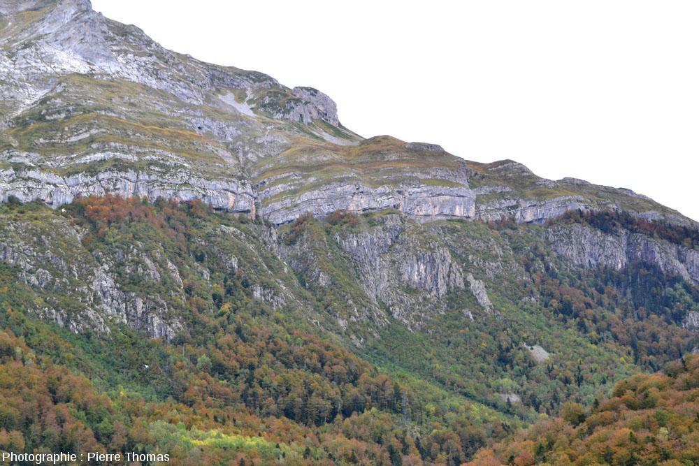 La discordance Crétacé supérieur / granite hercynien de la région du Pic de Ger, vue depuis la vallée du gave d'Ossau (Pyrénées Atlantiques)
