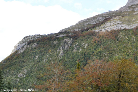 Zoom sur l'extrémité occidentale (Nord-Ouest) de la discordance Crétacé / Hercynien du Pic de Ger