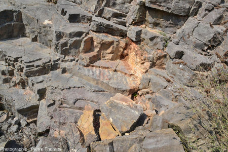 Dalle calcaire en place montrant de superbes ripple marks vusde dessus, Viséen (Carbonifère inférieur) de la Carrière du Boulonnais (Pas de Calais)