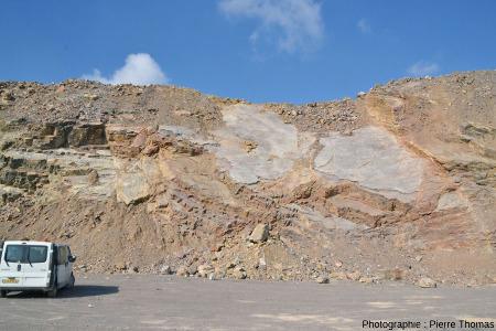 Surface (inclinée à 40° vers le Sud) d'une dalle de calcaire du Viséen (Carbonifère inférieur) de la Carrière du Boulonnais (Pas de Calais)