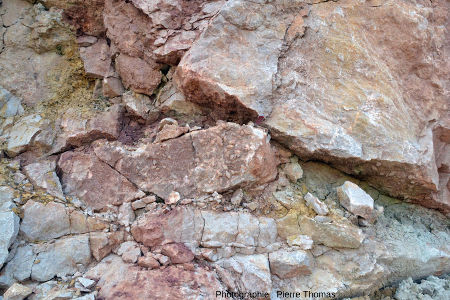 Front de taille riche en scalénoèdres de calcite, Carrière du Boulonnais (Pas de Calais)