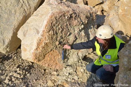 Un bloc éboulé, troisième site très riche en calcite, Carrière du Boulonnais (Pas de Calais)