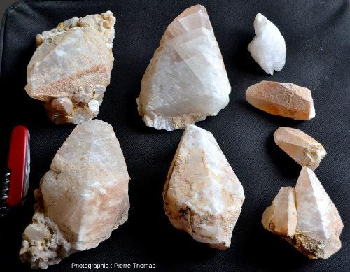 Échantillons de cristaux de calcite ramassés au pied du front de taille ci-dessus, Carrière du Boulonnais (Pas de Calais)