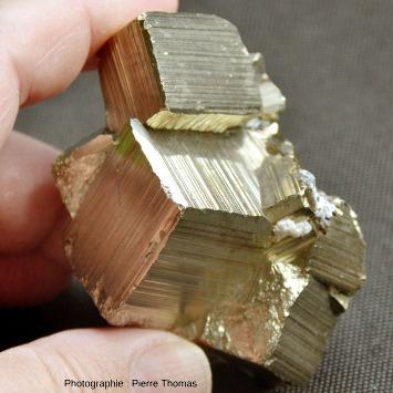 Macle de pyrite (FeS2) formée de plusieurs cubes s'interpénétrant